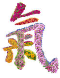 Chinese hieroglyph LIFE. The Chinese hieroglyph LIFE is made of fresh summer flowers. Abstract isolated collage royalty free stock image