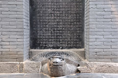 Chinese historic statuary, monument on turtle. Historic monument made by stone and long life animal statuary, turtle, which have over thousand year age, in Stock Photography
