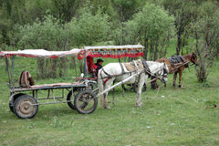 Chinese horse carriage Stock Image
