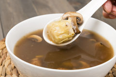 Chinese Hot and Sour Dumpling Soup Royalty Free Stock Photos