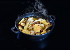 Chinese HotPot chinese style soup base Royalty Free Stock Photo