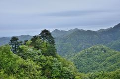 Chinese Hubei Wudang Mountains Stock Images