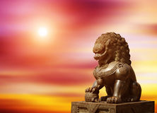 Chinese Imperial Lion Statue. At sunset royalty free stock photo