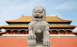 Chinese Imperial Lion Statue with Palace Forbidden city  (Beijin Stock Images