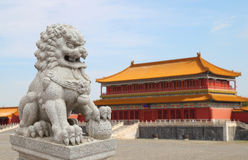 Chinese Imperial Lion Statue with Palace Forbidden city  Stock Images
