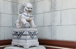 Chinese Imperial Lion Statue. Chinese imperial stone lion sculpture Stock Images