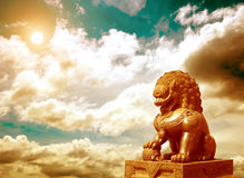 Chinese Imperial Lion Statue. At sunset stock image