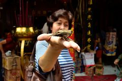 CHINESE-INDONESIAN CULTURE Royalty Free Stock Image