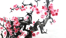 Chinese ink painting of flowers, plum blossom, on white background. Chinese painting of flowers, plum blossom, on white background Royalty Free Stock Images