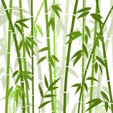 Chinese or japanese bamboo grass oriental wallpaper  illustration. Tropical asian plant background Stock Image