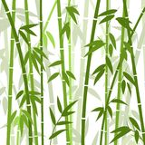 Chinese or japanese bamboo grass oriental wallpaper vector illustration. Tropical asian plant background Stock Photos
