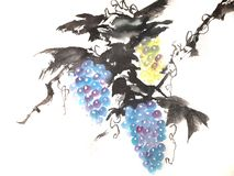 Chinese or japanese ink painting of grapes stock illustration