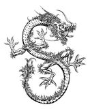 Chinese or Japanese Oriental Dragon Stock Photography