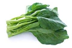 Chinese kale Stock Photo