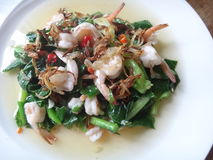 Chinese kale salad with shrimps Stock Images