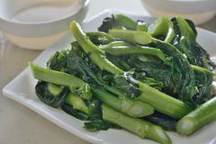 Chinese Kale Royalty Free Stock Images