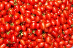 Chinese kleine tomaat Royalty-vrije Stock Afbeeldingen