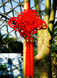 Chinese knot on Tropical Exhibition Greenhouse roof Royalty Free Stock Photography