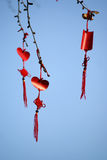 Chinese knots and blessings. Tied on a tree Royalty Free Stock Photo