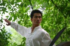 Chinese kongFu royalty-vrije stock afbeeldingen