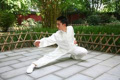 Chinese kongFu royalty free stock photo