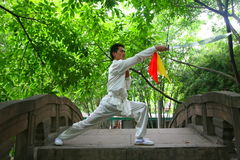 Chinese kongFu Stock Photos