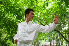 Chinese kongFu Royalty Free Stock Images