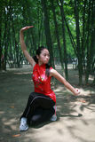 Chinese kongFu Royalty Free Stock Image
