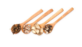 Chinese kruiden op houten lepels bij wit royalty-vrije stock afbeeldingen