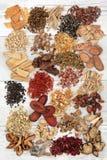Chinese kruidengeneeskunde royalty-vrije stock afbeelding