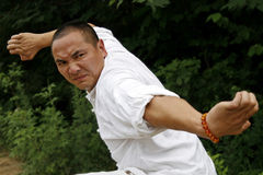 Chinese kung Fu. This is the real Kung Fu, Shaolin Boxing Stock Image