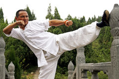 Chinese kung Fu Royalty Free Stock Images
