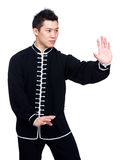 Chinese kung fu fighter Royalty Free Stock Photography