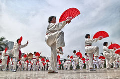 Chinese kung fu performance Royalty Free Stock Photos