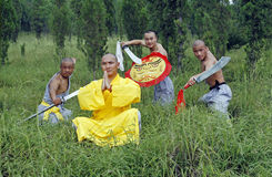 Chinese Kungfu Royalty-vrije Stock Afbeelding