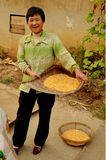 Chinese Lady on Commune with Baskets of Sweetcorn Royalty Free Stock Photos