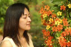 Chinese lady in garden. A young chinese asian lady looking at beautiful flower in garden Royalty Free Stock Photography