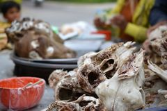 Chinese lamb skull, bones in Xinjiang Uyghur style barbeque royalty free stock images