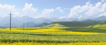 Chinese Landscape,Rape Field Royalty Free Stock Photo