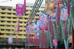 Chinese lantaarnbloemen Stock Afbeelding