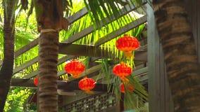 Chinese lantaarns en palmen stock videobeelden