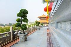 Chinese lantaarns tijdens nieuw jaarfestival met Bonsaiboom, Dwar Stock Foto's