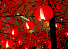 Chinese lantern. Red chinese lanterns for decoration Stock Image