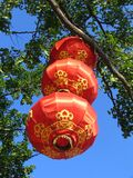 Chinese Lantern. In China Royalty Free Stock Photography
