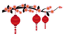 Chinese Lantern Background - Illustration. Chinese lantern on white background Royalty Free Stock Photo