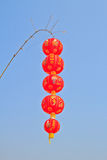 Chinese Lantern Stock Image