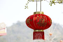 Chinese lantern. Decoration on the tree, Chinese means good luck royalty free stock images