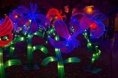 Chinese Lantern Festival Chinese New Year New Year. ALBUQUERQUE, NEW MEXICO, USA- NOVEMBER 12,2017: Chinese Lantern Festival lit up at night to celebrate the Stock Photography