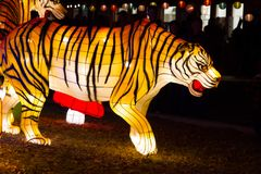 Chinese Lantern Festival New Year tiger lantern. ALBUQUERQUE, NEW MEXICO, USA- NOVEMBER 12,2017: Chinese Lantern Festival lit up at night to celebrate the Royalty Free Stock Photo