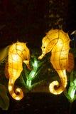 Chinese Lantern Festival-seahorses Royalty Free Stock Image